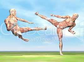 male musculature fight - 3d render