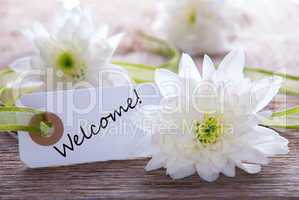 flower background with welcome