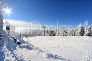 Winter Wald Schnee Sonne