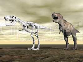tyrannosaurus rex - 3d render