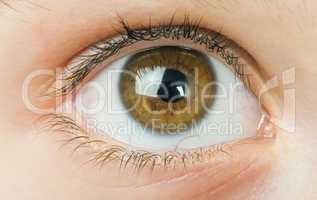 humane eye