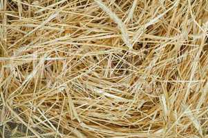 straw close up background