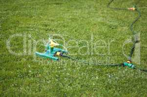 lawn sprinkler over green grass