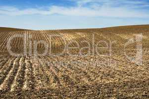 agricultural land soil and blue sky