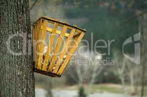 trash hung on a tree
