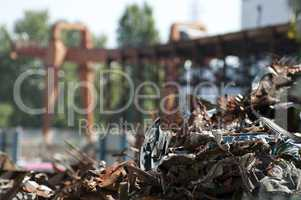 Pile of scrap iron and crane