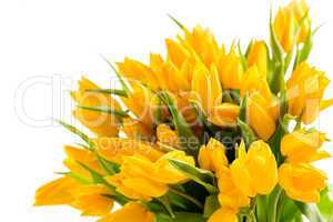 bunch of yellow tulips spring flowers