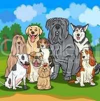 purebred dogs cartoon illustration