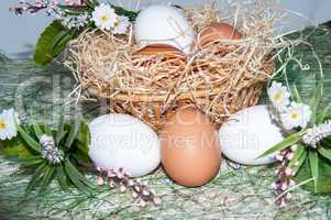 Fresh eggs for the feast of Easter.
