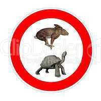 turtle and hare speed limit