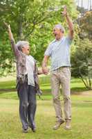 Active senior couple holding hands and jumping in park