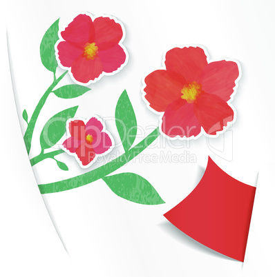 greeting paper card wich flower and ribbon for text
