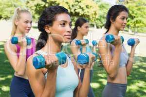 Multiethnic women lifting dumbbells