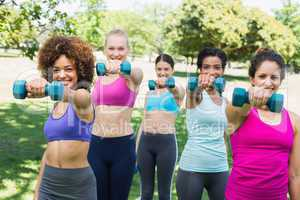 Women exercising with dumbbells in park