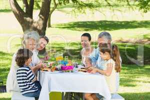 Extended family having lunch in lawn