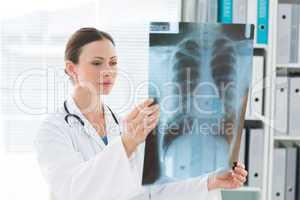 Doctor examining Xray report