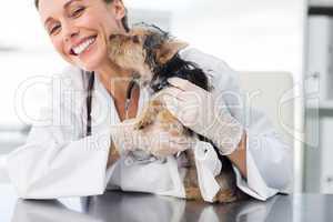 Puppy kissing female vet
