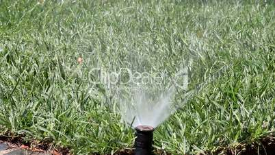 Garden Irrigation Spray