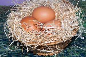 Fresh eggs for the feast of Easter..