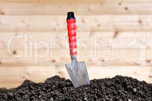 trowel and soil humus