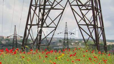 High-voltage lines and poppies.