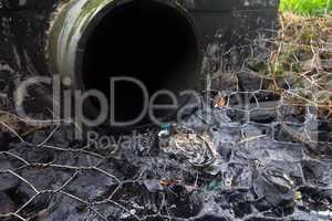 environmental pollution. engine oil from a pipe