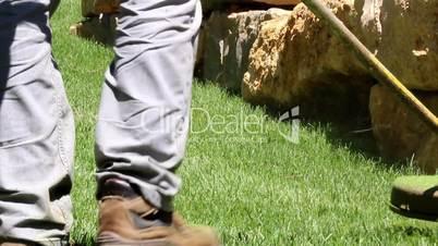 Lawn string trimmer cutting border