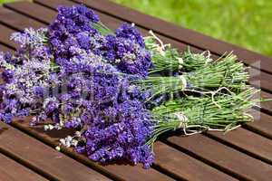 fresh bunch of scented lavender
