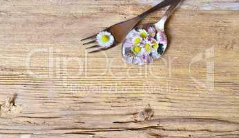 gänseblümchen auf einer gabel auf holzhintergrund