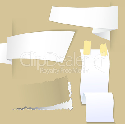 Collection with various pieces of paper