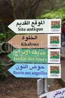 Botanical garden in Rabat