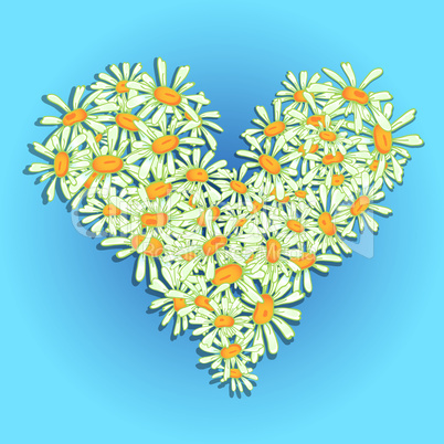Heart flowers camomile illustration for Valentine's day
