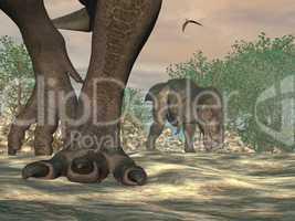 tyrannosaurus rex dinosaur feet - 3d render