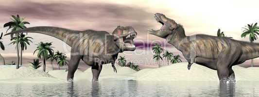 tyrannosaurus rex dinosaur fight - 3d render