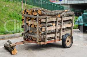 firewood in the trailer