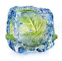Ice cube with brussel sprouts