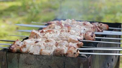 cooking pork shashlik, healthy outdoor picnic