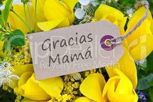 Mother`s day