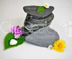 wellness steine balance