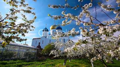Blessed place, church in background, spring garden