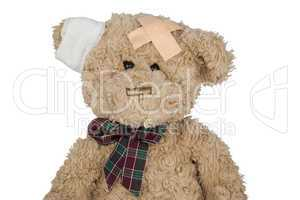 Teddy Freisteller