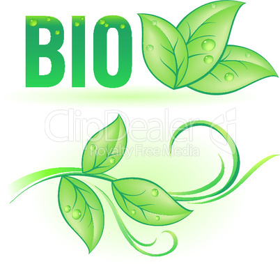Bio word with leaf elements