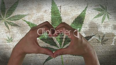 Hands Heart Symbol Marijuana Leaf