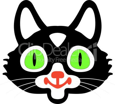 head of black cats