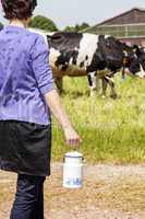 Woman with household milk jug in front of the cows