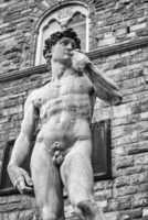 The stature of Michelangelo's David in Piazza Della Signoria, Fl