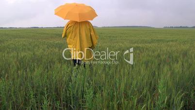 Farmer waiting for the rain in a wheat field