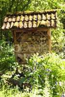 Insect Refuge
