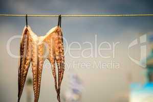Octopus hanging on line to dry at Mastichari, Kos, Greece, Europ