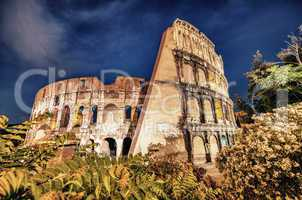Rome, The Colosseum. Night view on a beautiful summer night